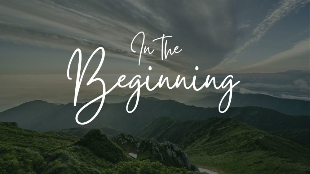 In the Beginning (Foundations: A Year Through the Bible)